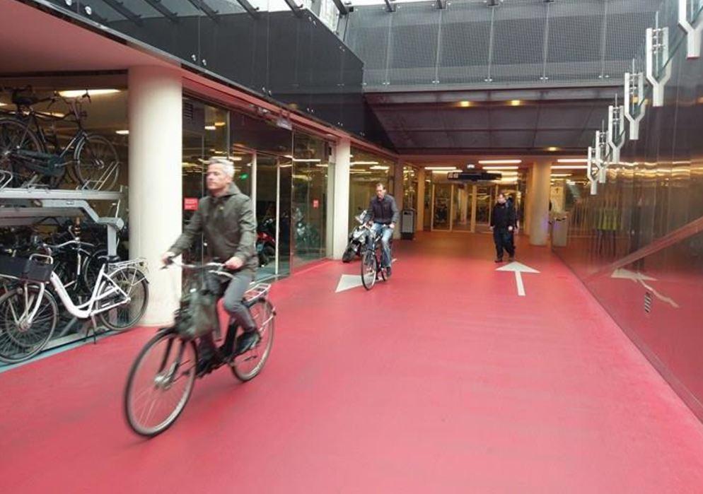 cycling rotterdam