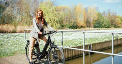 e-bikes sold in europe