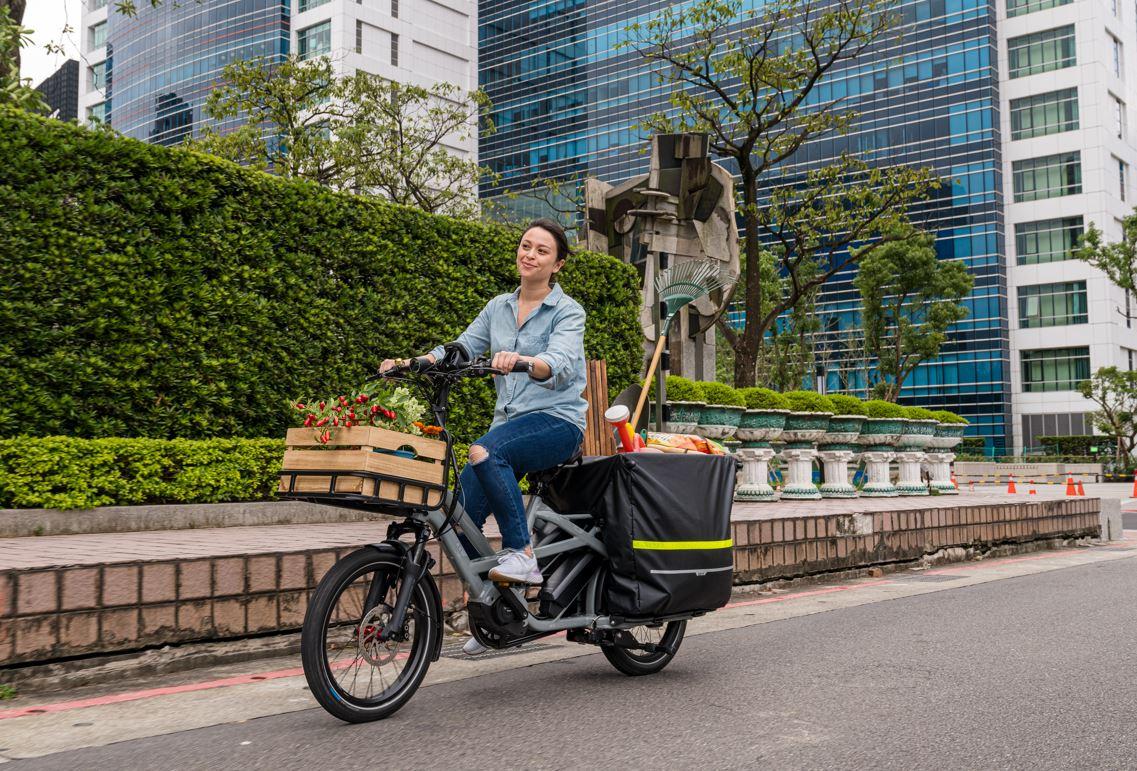 tern electric bike utility
